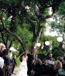 Bride and groom at altar beneath tree and paper lanterns