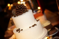 Round white cake topped with pinecones