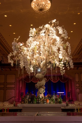 wedding bar display with tree wrapped with orchids and cascading orchid and jewel decor