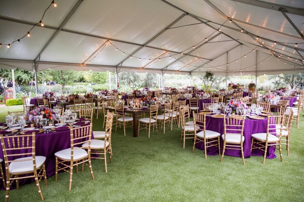 purple table linens gold chairs colorful floral centerpieces tented reception strings of lights