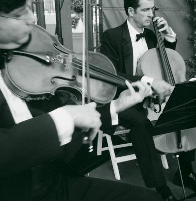 violin cello musician playing