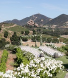 saddlerock ranch wedding, outdoor ceremony, white flowers, santa monica mountain view wedding