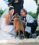 Bride and groom at ceremony with Boxer