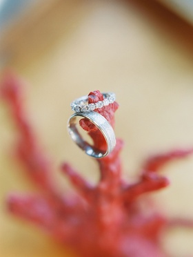 Wedding rings on piece of coral from CJ Lana Perry and Miroslav Rusev Barnyashev's wedding
