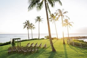 Outdoor wedding ceremony under palm trees