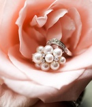 White pearl and diamond ring on pink rose