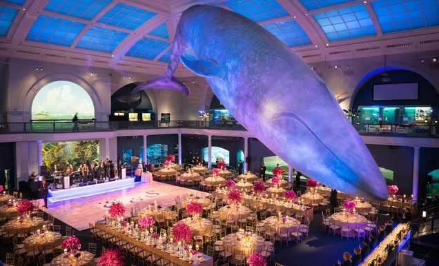 dinosaur chic celebration at the american museum of natural history rh insideweddings com