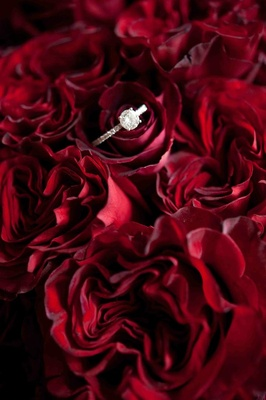 Round-cut diamond ring on bed of red roses