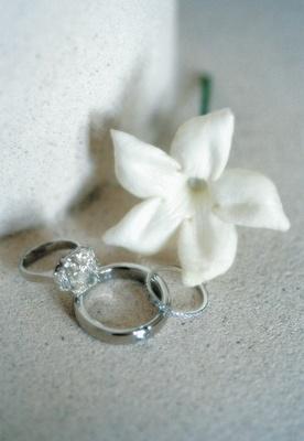 Alfredrick Joyner and Alisha Biehn rings