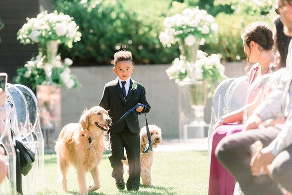 brandin cooks wedding, ring bearer walking dogs down the aisle