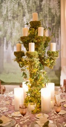 Woodsy wedding centerpiece with moss and green orchids