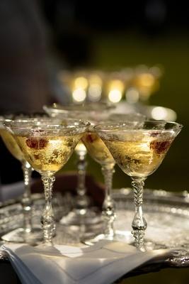 Champagne in etched glasses margarita glasses raspberry garnish antique