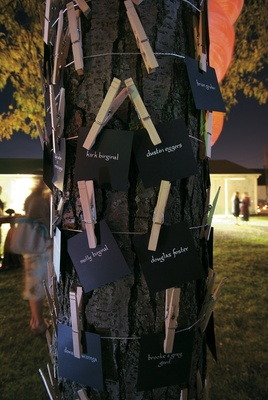Seating cards on clothespins tied to tree trunk