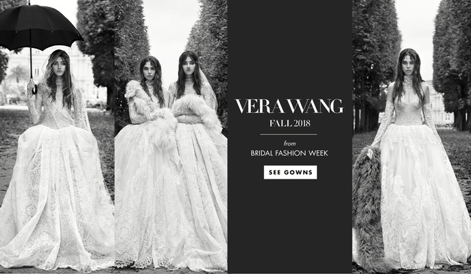 Vera Wang Black Wedding Dresses 2018