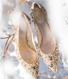 renee caovilla bridal heels, pointed toe, gold, crystal