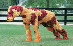 Four-legged animal sculpture made of red, yellow, and orange flowers