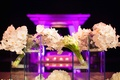 Purple wedding lighting and cube displays of orchids