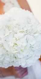 White Hydrangea Bouqet