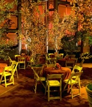 Indoor cocktail hour with trees in planters