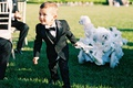Ring bearer in little tuxedo pulling white wagon with three maltese dogs in wedding
