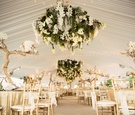 greenery and floral chandelier with orchids, calla lilies, moss, grapewood