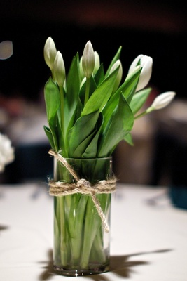White tulips with green leaves in vase tied with rope