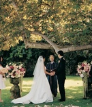Bride and groom married alfresco under tree