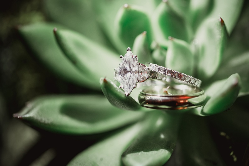 marquis diamond engagement ring on green succulent plant
