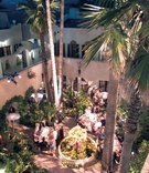 Wedding reception in a garden courtyard with a fountain, palm trees, and plants