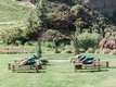 rustic chic outdoor ceremony california boho chic wedding styled shoot benches pillows vineyard ca