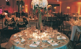Wedding Reception Decor, Wedding Reception Centerpieces