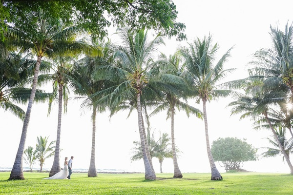 Bride and groom on grass lawn with palm trees at destination wedding