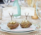 Outdoor wedding reception table with small nests & golden eggs holding bride & groom placecards