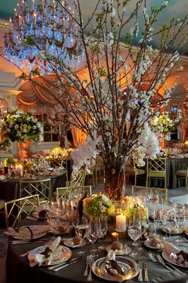Branch centerpiece with white flowers in ballroom