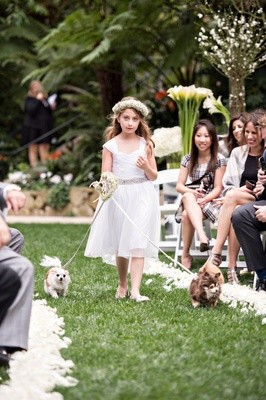 flower girl with baby's breath flower crown and silver belt walks small dogs down the aisle
