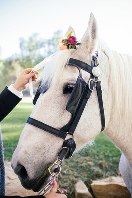 Bride's white horse with pastel orange and red roses, greenery on head for outdoor bohemian wedding
