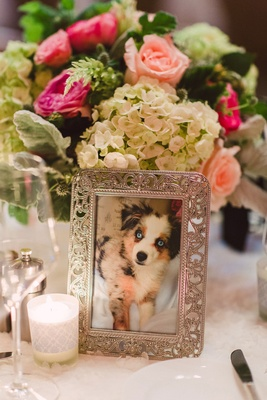 Wedding reception photo of couple's australian shepherd in crystal frame on wedding table decor idea