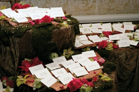Escort cards on mossy table with orchid and rose flowers