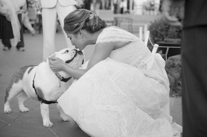 Finest Flower Girls & Ring Bearers Photos - Bride Kissing Dog - Inside  CE25