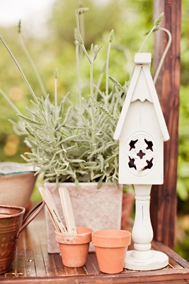 Clay pots and white bird house