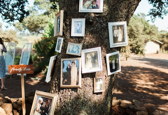 old family photos hanging on tree wedding ceremony rustic bride groom