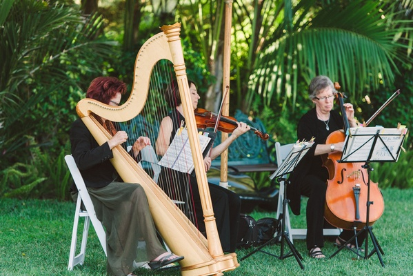 Wedding ceremony music string quartet ensemble harpist cellist and violinist