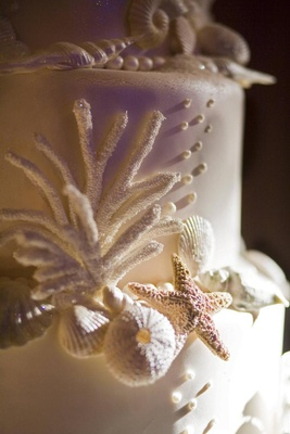White wedding cake with seashell and starfish decorations