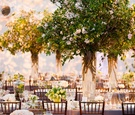 Indoor wedding reception that looks like garden