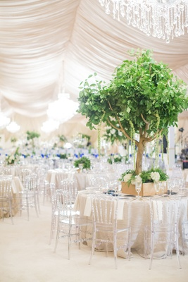 Wedding reception drapery chandelier clear chairs gold box with gold tree centerpiece amaranthus