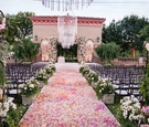 Flower petal aisle pink orange rose bush decorations flowers on wrought iron gate chandelier