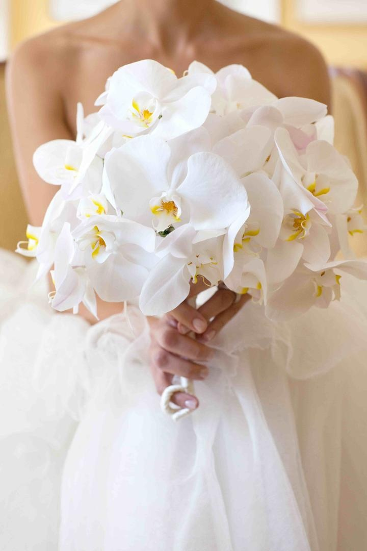 Bouquets photos bride holding white orchid bridal bouquet inside orchid bridal bouquet mightylinksfo