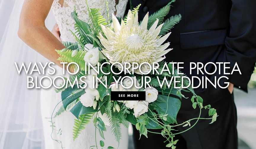 ways to incorporate protea blooms in your wedding