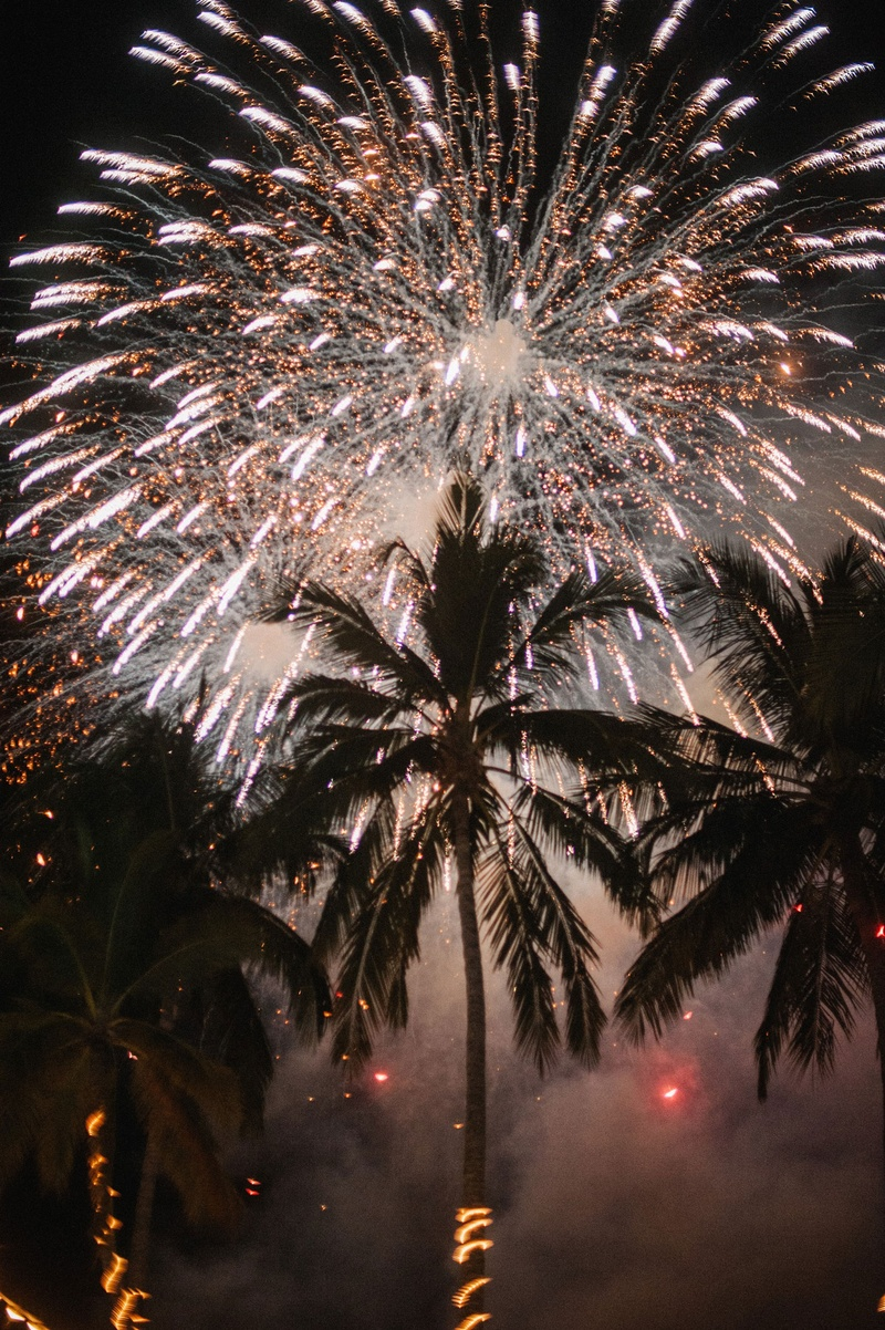 Destination wedding in mexico palm trees with string lights and large firework show in sky