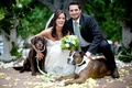 Bride in a Claire Pettibone gown and groom in a pinstripe suit with their dogs